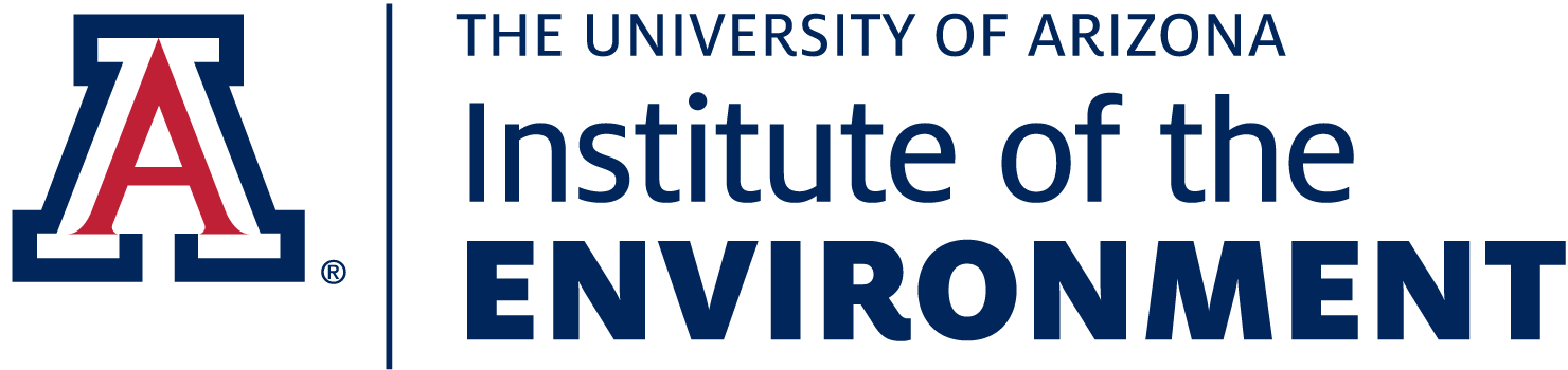 Institute of the Environment Logo